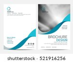 brochure layout template  cover ... | Shutterstock .eps vector #521916256
