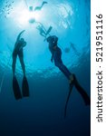 free diver ascending along the... | Shutterstock . vector #521951116