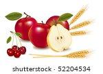 photo realistic vector... | Shutterstock .eps vector #52204534
