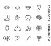 human anatomy icons with white... | Shutterstock .eps vector #522045928