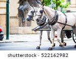 Horse Drawn Carriage Running...