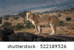 Lioness On A Rock In Masai Mar...