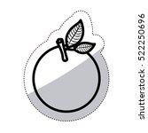 isolated orange fruit design | Shutterstock .eps vector #522250696