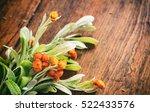 fresh helichrysum twig on a... | Shutterstock . vector #522433576