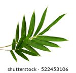 close up top view bamboo leaves ... | Shutterstock . vector #522453106