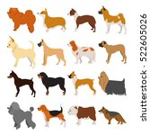 Set Of Purebred Dogs. Domestic...