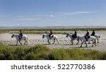 camargue  france. september 19... | Shutterstock . vector #522770386