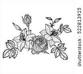 vintage vector floral... | Shutterstock .eps vector #522813925