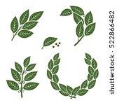 bay leaf set. vector | Shutterstock .eps vector #522866482