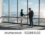 businessman and businesswoman... | Shutterstock . vector #522883132