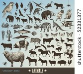 Stock vector vector set animals collection of detailed animal illustrations and animal silhouettes 52331377