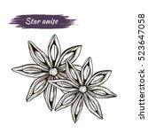 vector line drawing handmade... | Shutterstock .eps vector #523647058