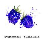 blackberry with juicy splashes. | Shutterstock . vector #523663816