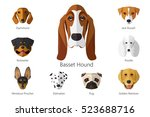 vector illustration of dog... | Shutterstock .eps vector #523688716