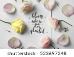 "quote ""bloom where you are... 