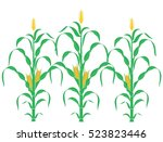 corn plant. abstract corn stalk ... | Shutterstock .eps vector #523823446