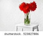 Beautiful Red Dahlia Flowers I...