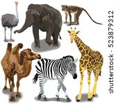 Stock vector set with african animals 523879312