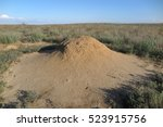 termite nest in the spring... | Shutterstock . vector #523915756