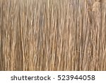 Reed Background Photo  Front...