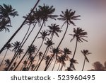 coconut palms and blue cloudy... | Shutterstock . vector #523960495