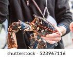 alive lobster in hand of... | Shutterstock . vector #523967116