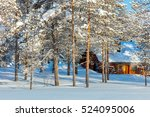North Winter forest Landscape with small wooden lodge, big trees covered snow, Finland, Lapland