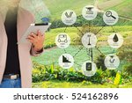 precision agriculture and... | Shutterstock . vector #524162896
