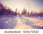 Nature Landscape Winter Forest...