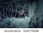 Cobweb With Ice On Wooden Trun...