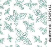 mint leaves  peppermint... | Shutterstock .eps vector #524393662