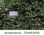 Small photo of Trudge green plant on the stone wall. A sign on the wall. Hedge with a sign, plaque on the stone wall
