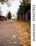 small suburban street in fall... | Shutterstock . vector #524417812