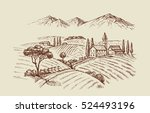 vector vintage hand drawn... | Shutterstock .eps vector #524493196