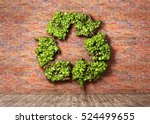 Eco Concept. The Green Plant In ...