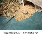 brown rice uncooked in a bag... | Shutterstock . vector #524505172