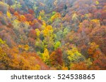 aerial view of a colorful... | Shutterstock . vector #524538865