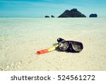 the swimming mask and snorkel...   Shutterstock . vector #524561272