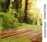 wooden desk and spring garden... | Shutterstock . vector #524647306