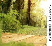 wooden desk and spring garden... | Shutterstock . vector #524647342