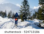 a tourist with a backpack and... | Shutterstock . vector #524713186
