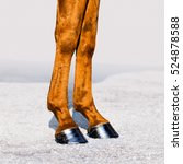 Horse Legs With Hooves Closeup...