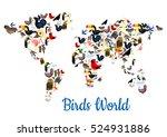 Birds World In Shape Of Map....