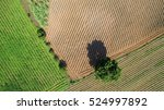 Aerial View Of Farmland  Drone...