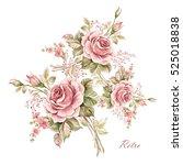 watercolor floral composition... | Shutterstock . vector #525018838