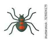 Spider. Icon Of Bright Small...