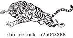 jumping tiger. aggressive big... | Shutterstock .eps vector #525048388