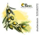 olive branch angular frame ... | Shutterstock .eps vector #525182572