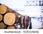 pile of wood logs. wood logs... | Shutterstock . vector #525214606