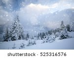 trees covered with hoarfrost... | Shutterstock . vector #525316576